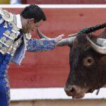 Cabeza de toro para colgar